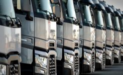 The sales of trucks and buses rise the number of 219.000 units